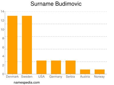 Surname Budimovic