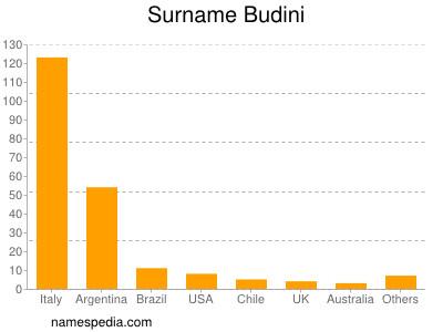 Surname Budini