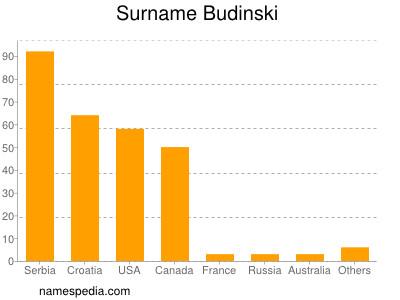 Surname Budinski