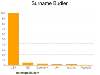 Surname Budler
