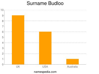 Surname Budloo