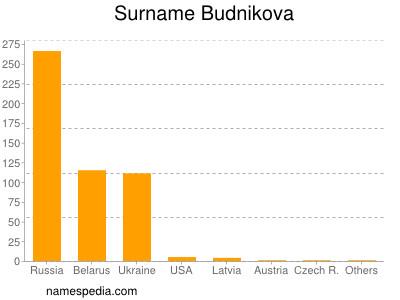 Surname Budnikova
