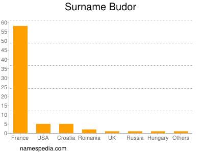 Surname Budor