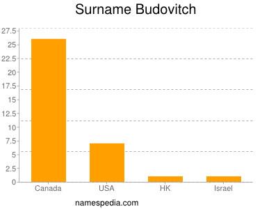 Surname Budovitch