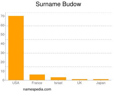 Surname Budow