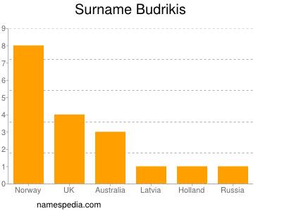 Surname Budrikis