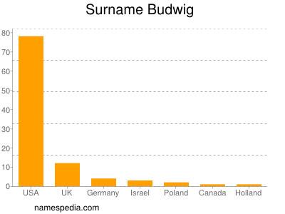 Surname Budwig