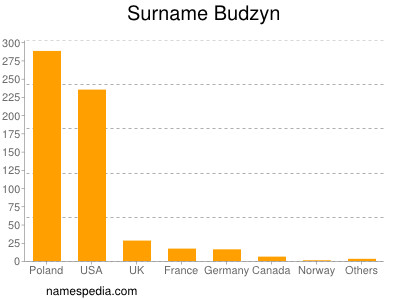Surname Budzyn