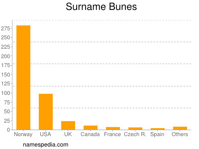 Surname Bunes