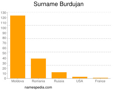 Surname Burdujan