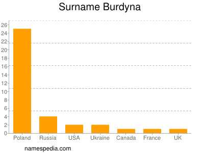 Surname Burdyna