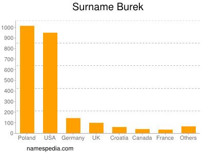 Surname Burek