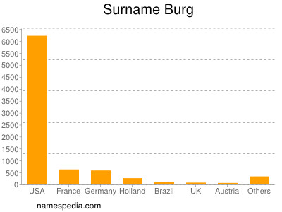 Surname Burg