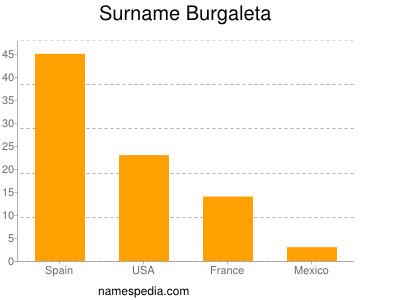 Surname Burgaleta