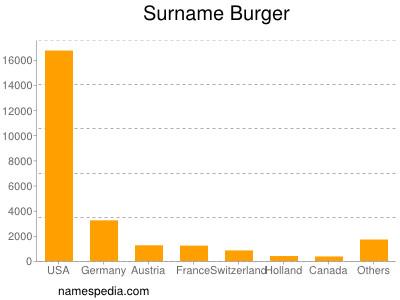 Surname Burger