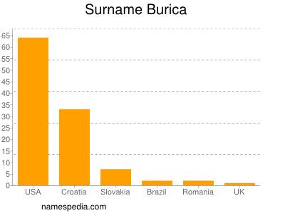 Surname Burica