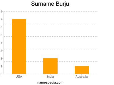 Surname Burju