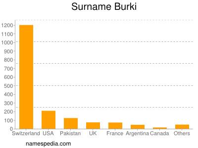 Surname Burki
