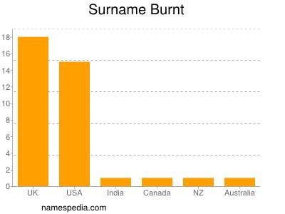 Surname Burnt