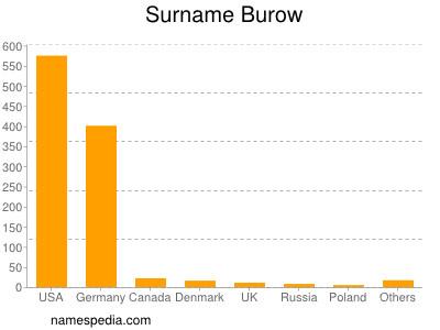 Surname Burow