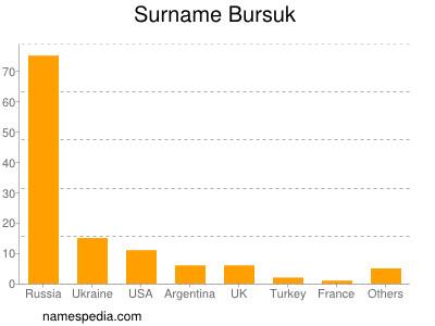 Surname Bursuk