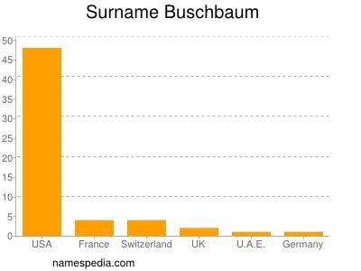 Surname Buschbaum