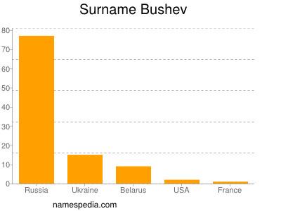 Surname Bushev