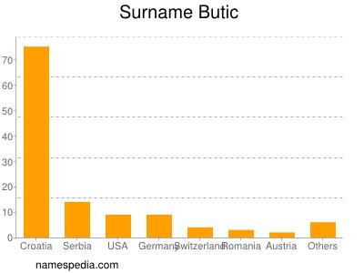 Surname Butic