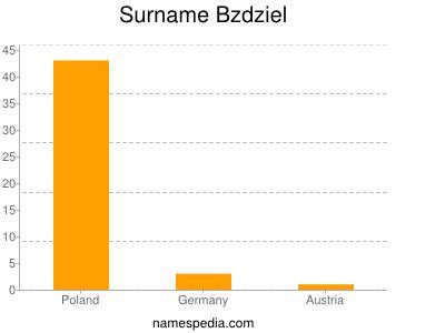 Surname Bzdziel