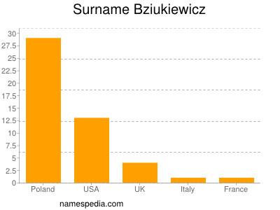 Surname Bziukiewicz