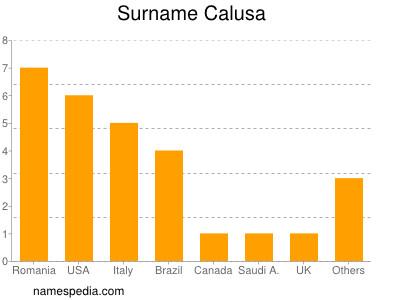 Surname Calusa