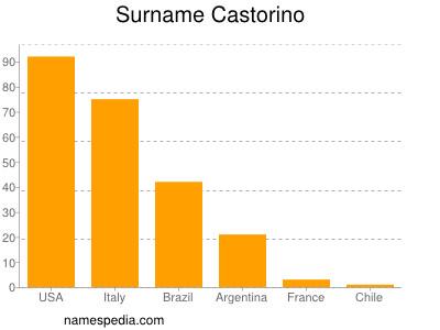 Surname Castorino