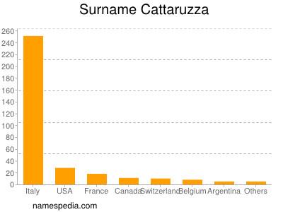 Surname Cattaruzza