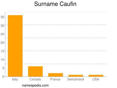 Surname Caufin