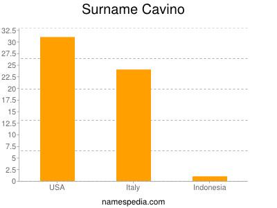 Surname Cavino