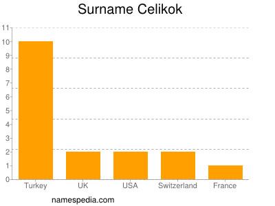 Surname Celikok