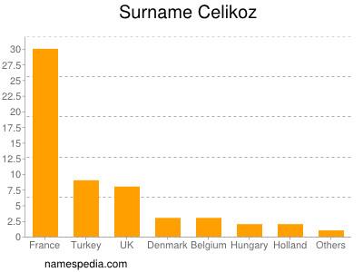 Surname Celikoz