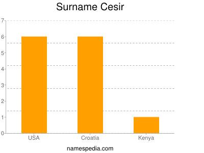 Surname Cesir