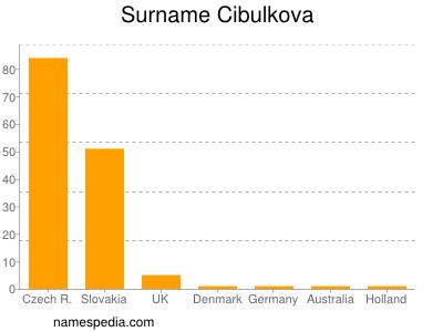 Surname Cibulkova