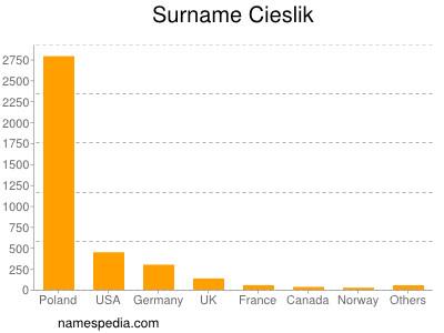 Surname Cieslik