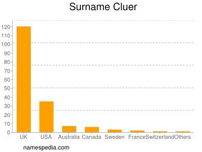 Surname Cluer