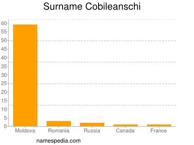 Surname Cobileanschi