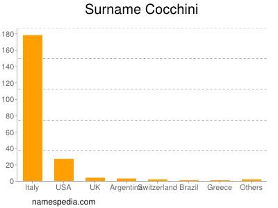 Surname Cocchini