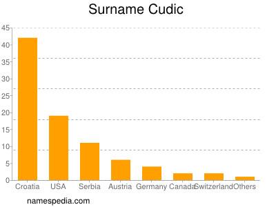 Surname Cudic