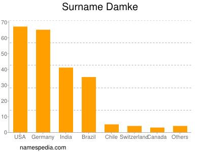 Surname Damke