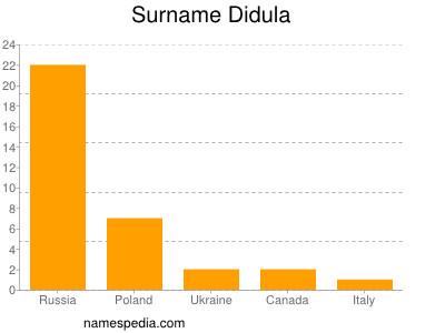 Surname Didula