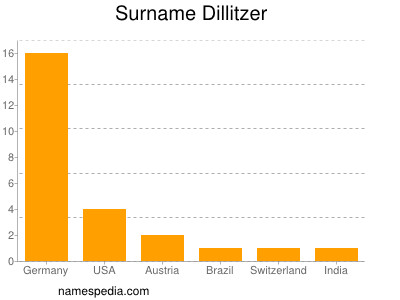 Surname Dillitzer