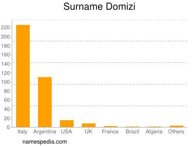Surname Domizi