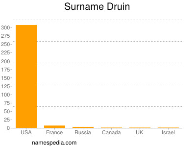 Surname Druin