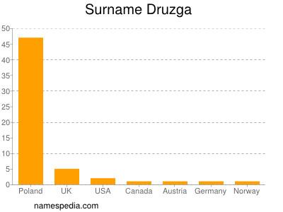 Surname Druzga